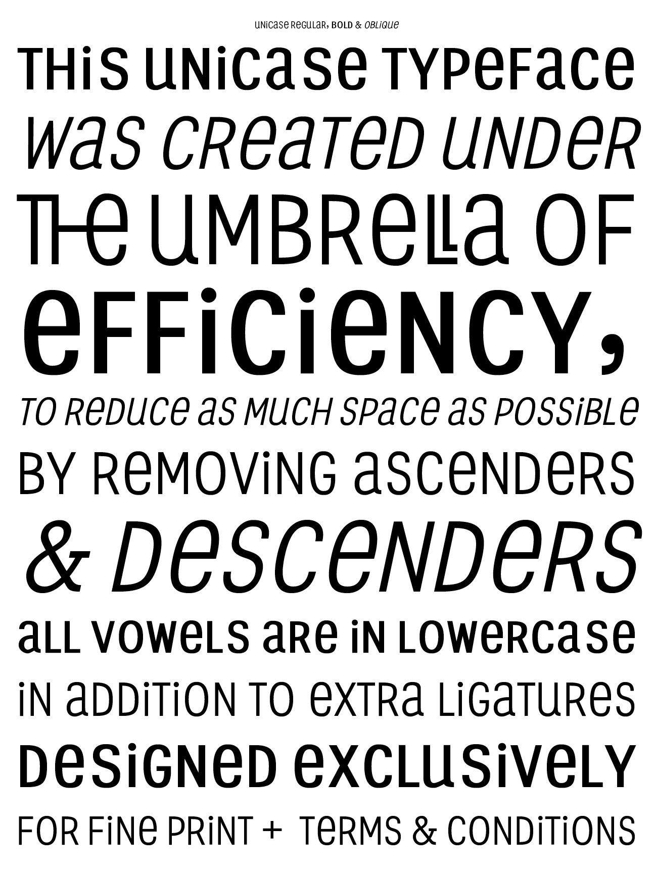Efficiency typeface for terms and agreements prin limphongpand platinumwayz